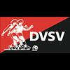logo_dvsv